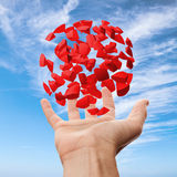 Right male hand holding red  fragments above blue sky Stock Images