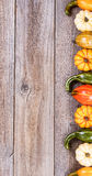 Right side border of autumn gourd decorations on rustic wooden b Royalty Free Stock Photography