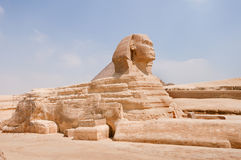Right side of the Sphinx of Giza. Right side of the Sphinx of Giza, Cairo, Egypt Royalty Free Stock Photos