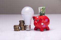 The right thing. Piggy bank and savings going from the use of LED light bulbs Royalty Free Stock Photos