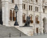 Right of two Bronze lion statues flanking the East entrance of the Hungarian Parliament Building, Budapest. Pictured is the right of two bronze lion statues royalty free stock photo