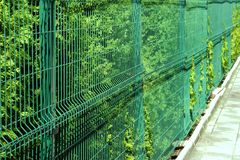 Rigid Mesh Fencing Panels. Green Background Royalty Free Stock Photography
