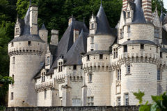 Rigny-Usse Castel  免版税库存图片