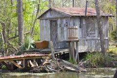 Riguardato i rami paludosi di fiume Fotografie Stock