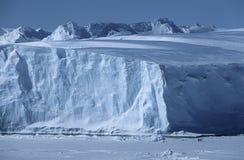 南极洲威德尔海Riiser拉尔森与皇企鹅的冰架冰山 免版税图库摄影