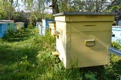 Rij van bijenkorven Royalty-vrije Stock Afbeeldingen