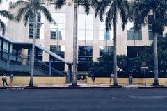 Rij van bomen met het gebouw als zijn achtergrond Royalty-vrije Stock Fotografie