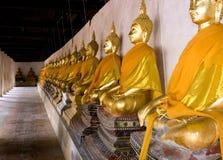 Rij van buddhas royalty-vrije stock foto