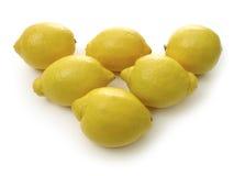 Rij van citroenen Stock Afbeeldingen