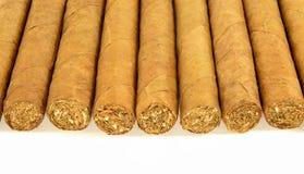 Rij van Cubaanse sigaren Royalty-vrije Stock Fotografie