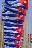 Rij van Cubaanse vlaggen die in de wind vliegen Stock Fotografie