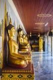 Rij van de standbeelden van Boedha Royalty-vrije Stock Afbeeldingen