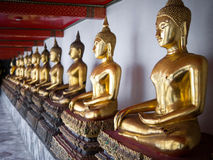 Rij van de Standbeelden van Boedha in Wat Pho Temple, Bangkok, Thailand Stock Afbeelding