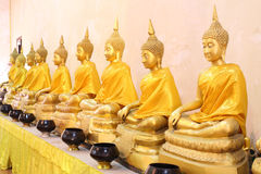 Rij van gouden Boedha in Ayutthaya. Stock Fotografie