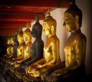 Rij van gouden en donkere gezette buddhas in een Boeddhistische tempel Royalty-vrije Stock Foto
