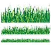 Rij van gras Stock Afbeelding