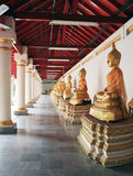 Rij van het standbeeld van Boedha in een Boeddhistische tempel Stock Foto's