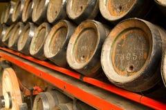 Rij van houten biervatten Royalty-vrije Stock Afbeelding