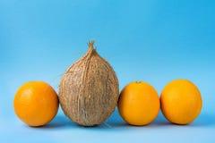 Rij van Identieke Sinaasappelen Één Enkele Kokosnoot op Blauwe Achtergrond De Uniciteitsconcept van de individualiteitspersoonlij royalty-vrije stock foto's