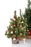Rij van Kerstmisbomen royalty-vrije stock foto's