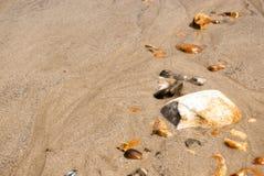 Rij van kiezelstenen het het zand Stock Foto