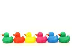 Rij van kleurrijke plastic eendjes Stock Foto