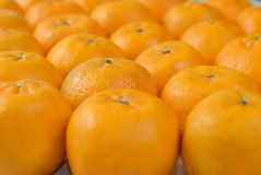 Rij van Mandarin Stock Foto's