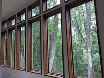 Rij van moderne vensters Royalty-vrije Stock Afbeeldingen