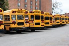 Rij van schoolbussen Royalty-vrije Stock Fotografie