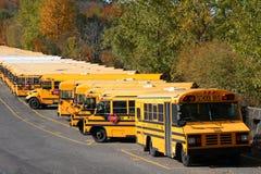 Rij van schoolbussen Stock Afbeelding