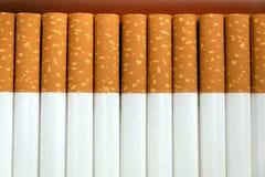 Rij van sigaretten Stock Foto's