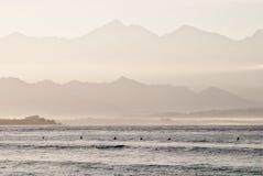Rij van surfers Stock Fotografie