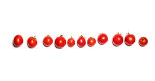 Rij van tomaten op wit wordt geïsoleerd dat Hoogste mening Stock Foto's