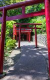 Rij van traditionele rode Torii met ingangsweg aan het Japanse die Heiligdom van Jigoku Meguri Shinto door een groen landschap wo stock foto's