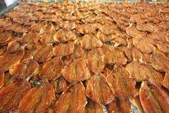 Rij van vele Droge die vissenmakreel op het net wordt uitgespreid Zeevruchtenverwerking voor verkoop bij Zeevruchten lokale Markt royalty-vrije stock afbeelding