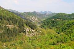 Rijeka Crnojevica Montenegro Stock Photos