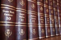 Rijeka, Croatia, September 25, 2018. Side view of volumes encyclopedia Britannica, number ten continuous. Rijeka, Croatia, September 25, 2018. Side view of royalty free stock photo