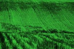Rijen en Voren op Geploegd Gebied voor de Landbouw Landbouwprik stock afbeeldingen