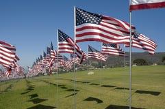 Rijen van Amerikaanse Vlaggen Stock Fotografie
