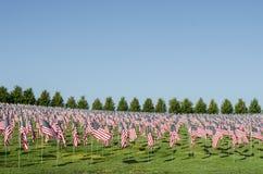 Rijen van Amerikaanse vlaggen Stock Foto