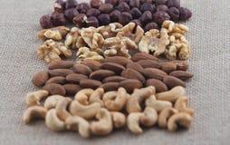 Rijen van cashewnoten, amandelen, okkernoten en hazelnoten op een jutestof Selectieve nadruk op okkernoten royalty-vrije stock foto's