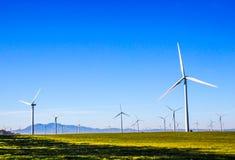 Rijen & Rijen van Energie die Windmolens produceren Royalty-vrije Stock Foto