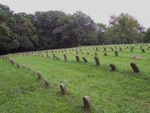 Rijen van genummerde graven Royalty-vrije Stock Foto's