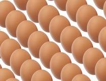 Rijen van organische antibiotische vrije bruine eieren Stock Afbeelding