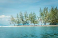 Rijen van pijnboombomen, Duidelijke overzees en blauwe hemel in Koh Kam Tok Kam T Royalty-vrije Stock Fotografie