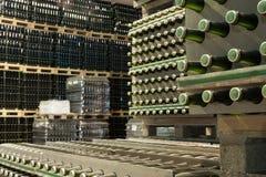 Rijen van wijnflessen in wijnmakerij Stock Fotografie