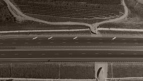 Rijen van wijngaard en weg stock footage