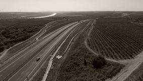 Rijen van wijngaard en weg stock videobeelden
