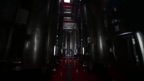 Rijen in winemakerfabriek stock video