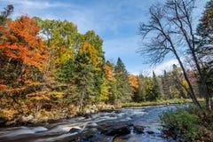 Rijke kleuren van een de herfstbos op een steenachtige rivieroever Royalty-vrije Stock Foto